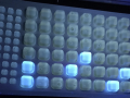 IDEXX- 2000 tray exposed to UV light showing positive results for E. coli.