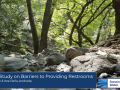 Title slide showing rocks under trees